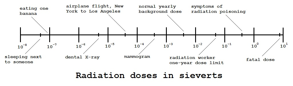 Radiation Doses. Radiation is measured in becquerels, grays and sieverts
