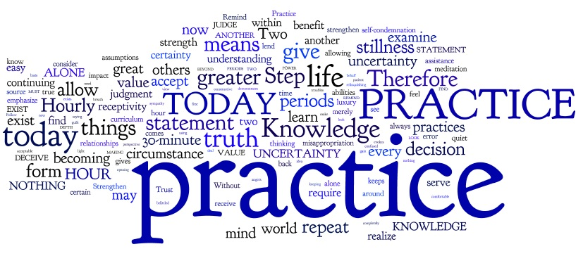 Steps To Knowledge Steps 78-83 Word Cloud by Wordle. Some small but substantial successes