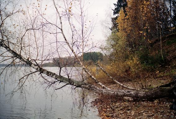 без Знания, Можайское водохранилище, Московская область, Россия