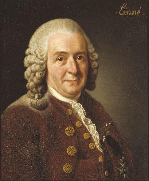 Carl_von_Linné What species will you sing?