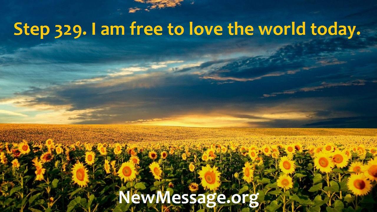 Step329-field-of-sunflowers Astonishment, rejoicing, gratitude