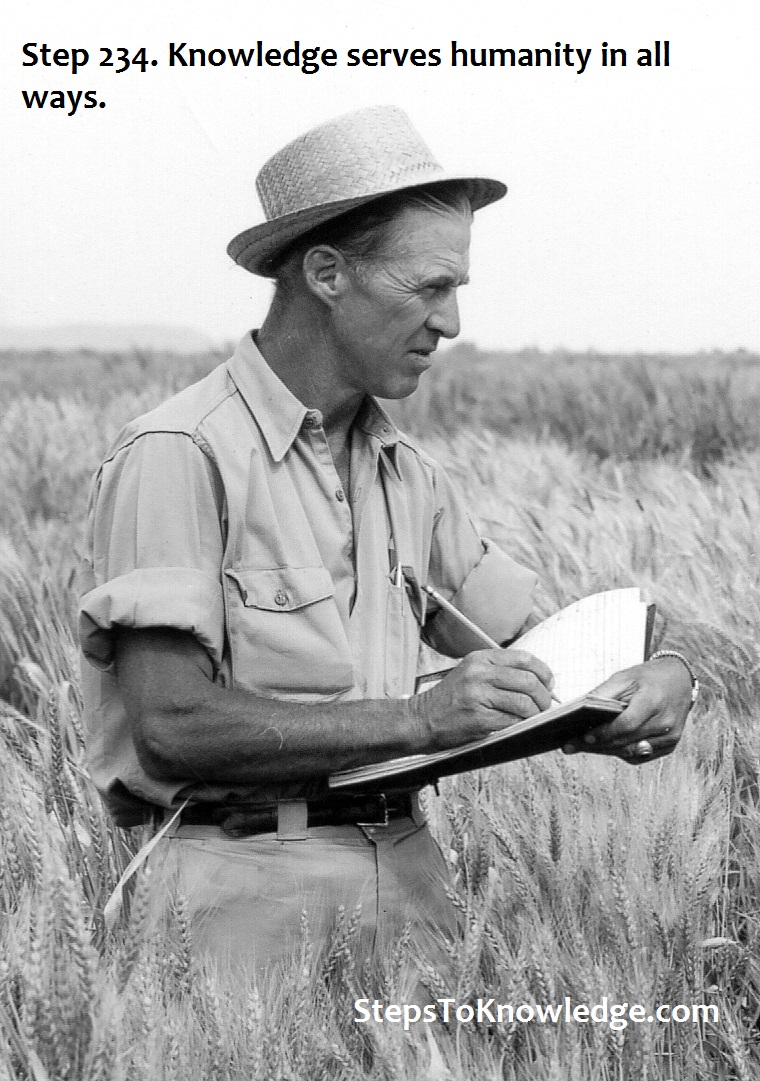 Norman Borlaug scoring wheat for rust resistance. What happened? A man of Knowledge happened!