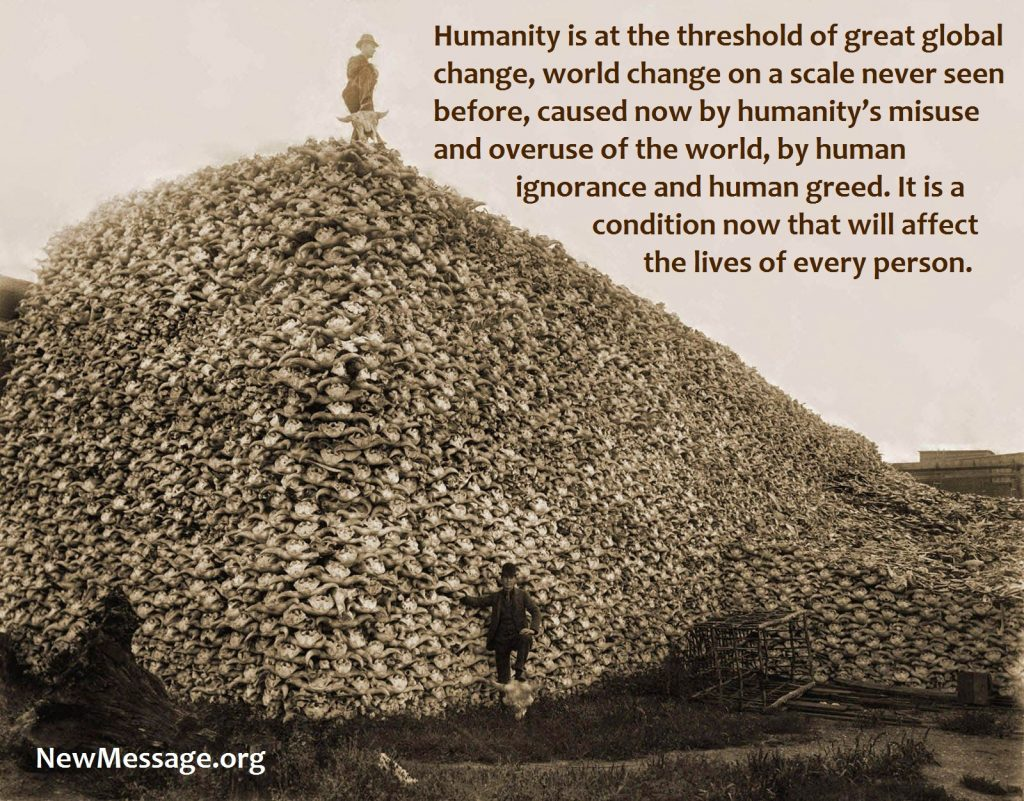 Pile of Bison skulls 1870. An increasingly difficult world